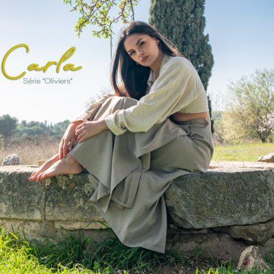 2021-02-21-CARLA-Oliviers-00